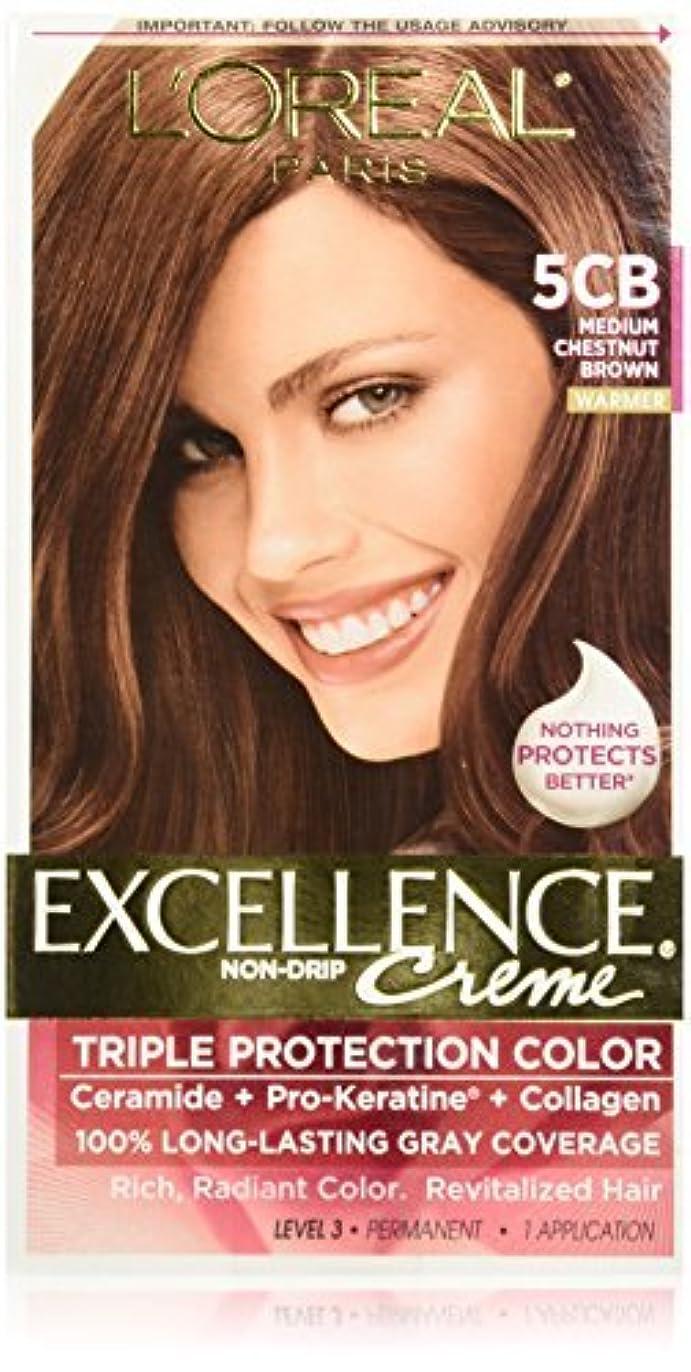 ばか少年ステージL'Oreal Excellence by L'Oreal Paris Hair Color [並行輸入品]