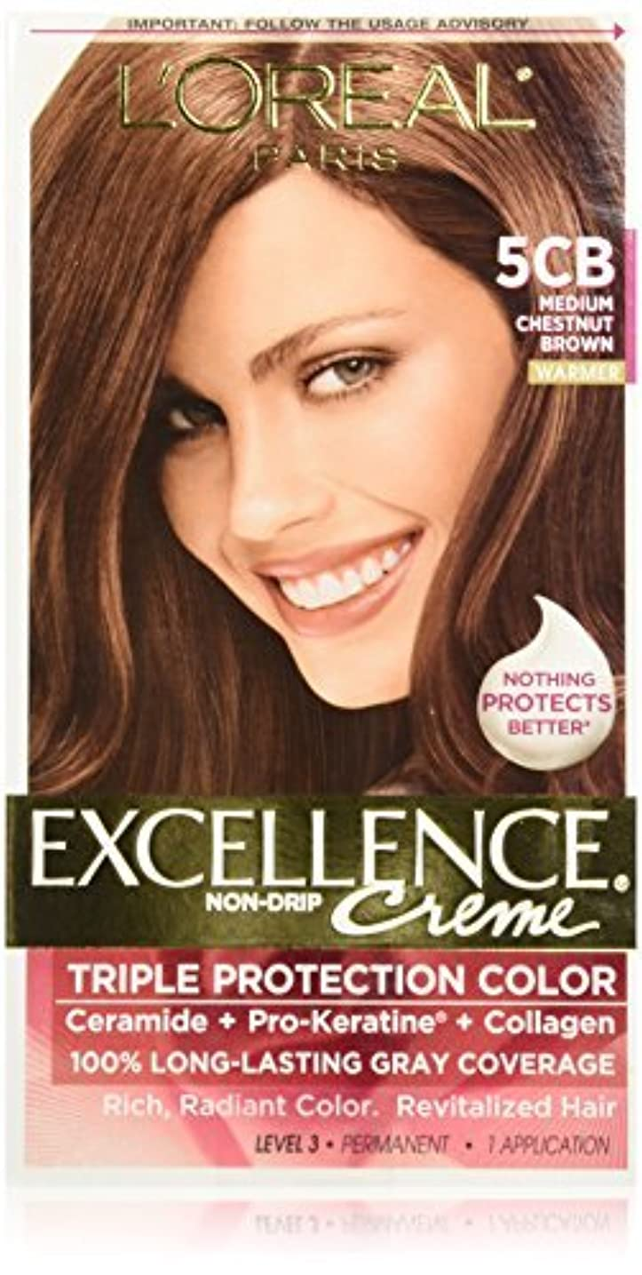 ふつう車不信L'Oreal Excellence by L'Oreal Paris Hair Color [並行輸入品]