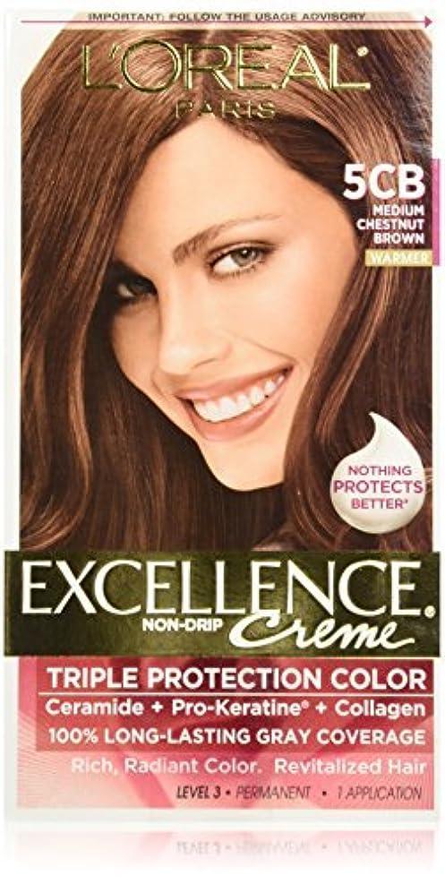 歯科医クリケット広々としたL'Oreal Excellence by L'Oreal Paris Hair Color [並行輸入品]