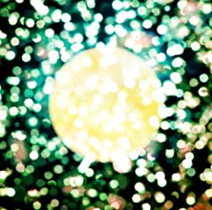 Plastic Tree「ムーンライト————。」のジャケット画像