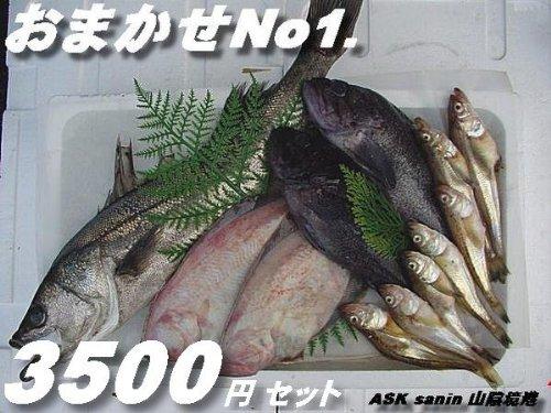 鮮度が命!!高級鮮魚セット3500
