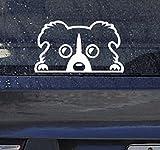 カーステッカー ボーダーコリー ドッグ 防水 シール 銀 大 ステッカー 犬 シルバー