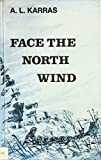 ノースフェイス Face the north wind