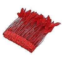 FLAMEER 2メートル 羽根 寝具 服 家の装飾 DIYアクセサリー 工芸品アクセサリー 手作り 10色選ぶ - 赤