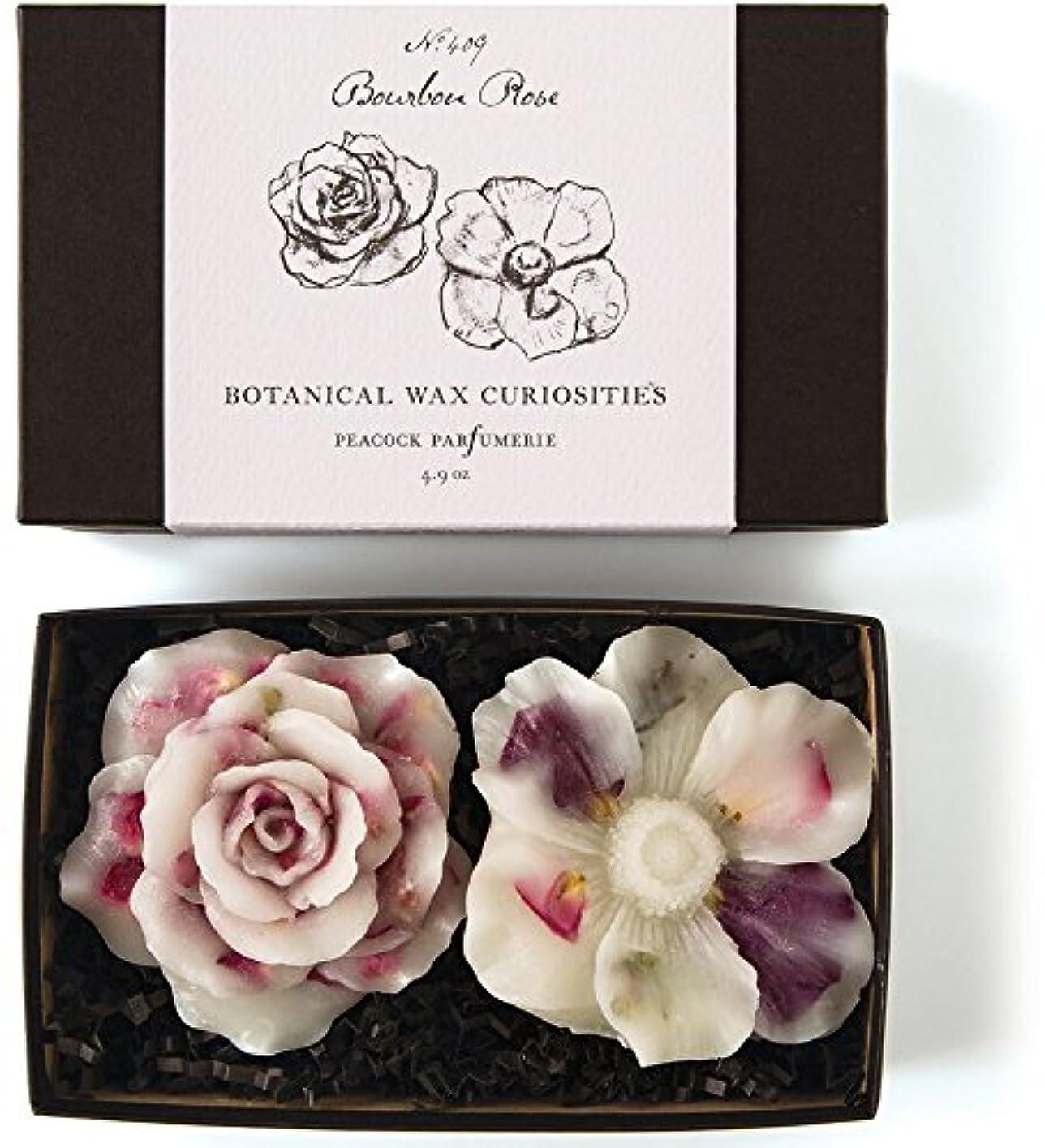錫地平線一般的なロージーリングス ボタニスト ボタニカルワックスキュリオシティ ブルボンローズ ROSY RINGS Botanist Collection Botanical Wax Bourbon Rose