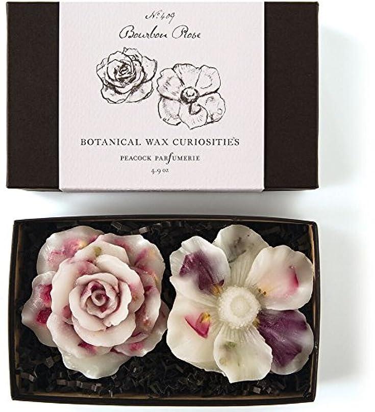 母オーバーラン招待ロージーリングス ボタニスト ボタニカルワックスキュリオシティ ブルボンローズ ROSY RINGS Botanist Collection Botanical Wax Bourbon Rose