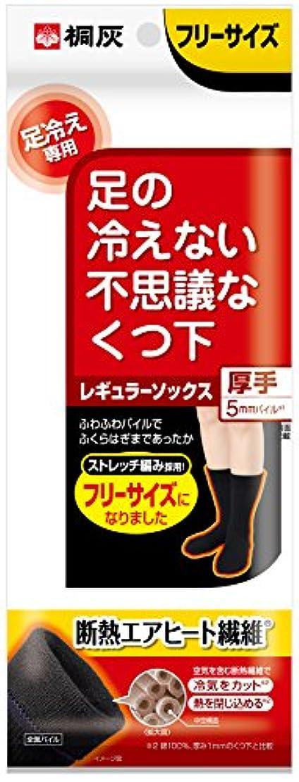 キャプチャー霜酸っぱい桐灰化学 足の冷えない不思議なくつ下 レギュラーソックス 厚手 足冷え専用 フリーサイズ 黒色 1足分