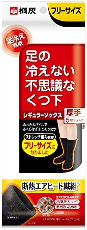大西洋機関風味桐灰化学 足の冷えない不思議なくつ下 レギュラーソックス 厚手 足冷え専用 フリーサイズ 黒色 1足分