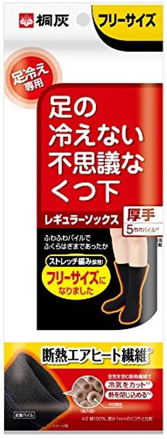 線形隠夢中桐灰化学 足の冷えない不思議なくつ下 レギュラーソックス 厚手 足冷え専用 フリーサイズ 黒色 1足分