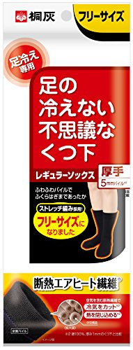 桐灰化学 足の冷えない不思議なくつ下 レギュラーソックス 厚手 足冷え専用 フリーサイズ 黒色 1足分(2個入)