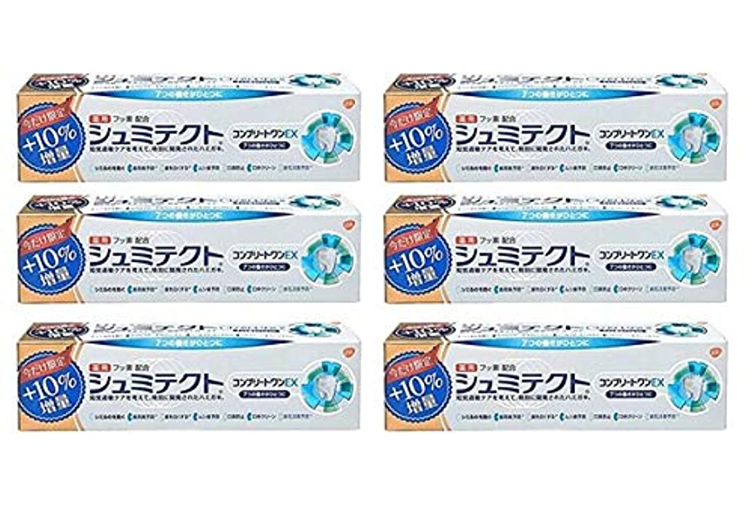 仕える銀河ポータル【6個セット】 薬用シュミテクトコンプリートワンEX増量99g