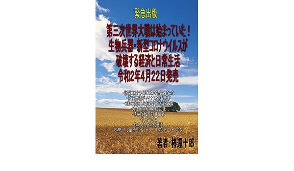 世界 次 大戦 三 第 コロナ 米国務省の文書が暴露! 中国が6年前からコロナウイルスなど生物武器で第3次世界大戦の準備か