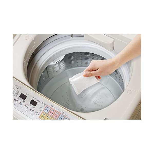 アーネスト 洗濯槽キレイサッパリ 50g 小分...の紹介画像3
