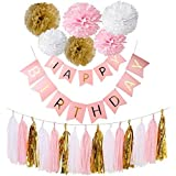 Happy Birthday Banner Flag Bunting - Set of Tissue Paper Pom Poms Flowers and Tassels For Birthday Party Decoration (Pink Set2) [並行輸入品]