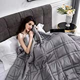 """Pine and River Ultra Plush Weighted Blanket -Great for Winter   Minky Warm Luxury - (60""""X80"""", 15 Lb)   Designer Blanket   One"""