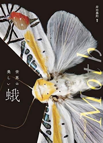 サカナクション【モス】歌詞の意味を考察!蛾の姿や繭が象徴するのは?身動きが取れない迷いの正体とは…の画像