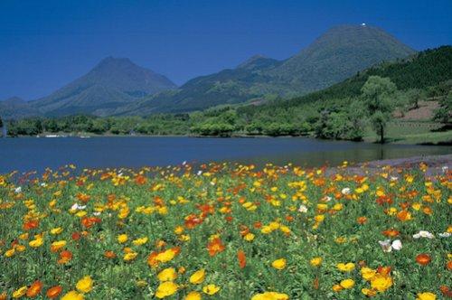 1500ピース 日本風景 ポピーと由布院・鶴見岳(大分県別府市)