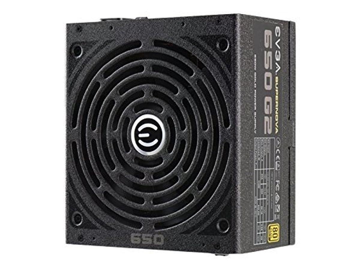 気まぐれな移動するショートカットEVGA SuperNOVA 650 G2 80 Plus Gold Rated, Fully Modular ATX 12V/EPS 12V ECO Mode Power Supply 220-G2-0650-Y1 by EVGA [並行輸入品]