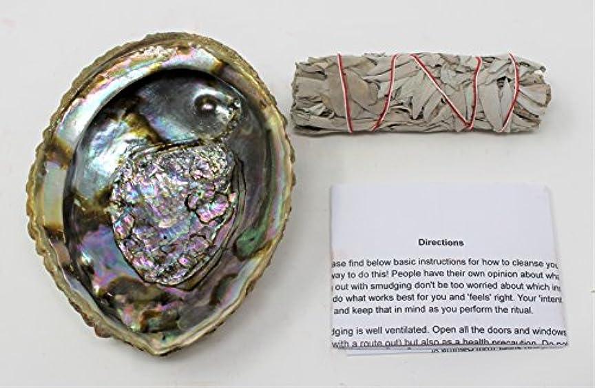 進化する予定付けるセージSmudgeキットwithカリフォルニアホワイトセージ、Large Abalone Shell Plus Smudging Directions