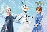 40ピース 子供向けパズル アナと雪の女王 家族の思い出 雪のおくりもの 【こどもジグソーパズル】