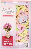 Blooming Greetingsカード花瓶、キャンディHearts、マルチカラー
