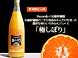 加藤柑橘園 青島三ケ日みかんジュース 極しぼり 2本セット