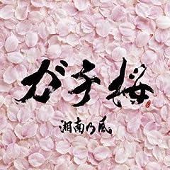 湘南乃風「ガチ桜」のジャケット画像