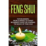 FENG SHUI: for Beginners! From Dummies to Expert Beginners Guide for Learning the Basics of Feng Shui (room decorating ideas, feng shui map, feng shui ... feng shui decorating) (English Edition)