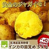 黄金のジャガイモ 北海道産 インカのめざめ 5kg