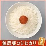 【無農薬米】 28年 福井県産 特別栽培米 無農薬 無化学肥料栽培 コシヒカリ 「特選」 2kg コウノトリが飛来する田んぼで作りました