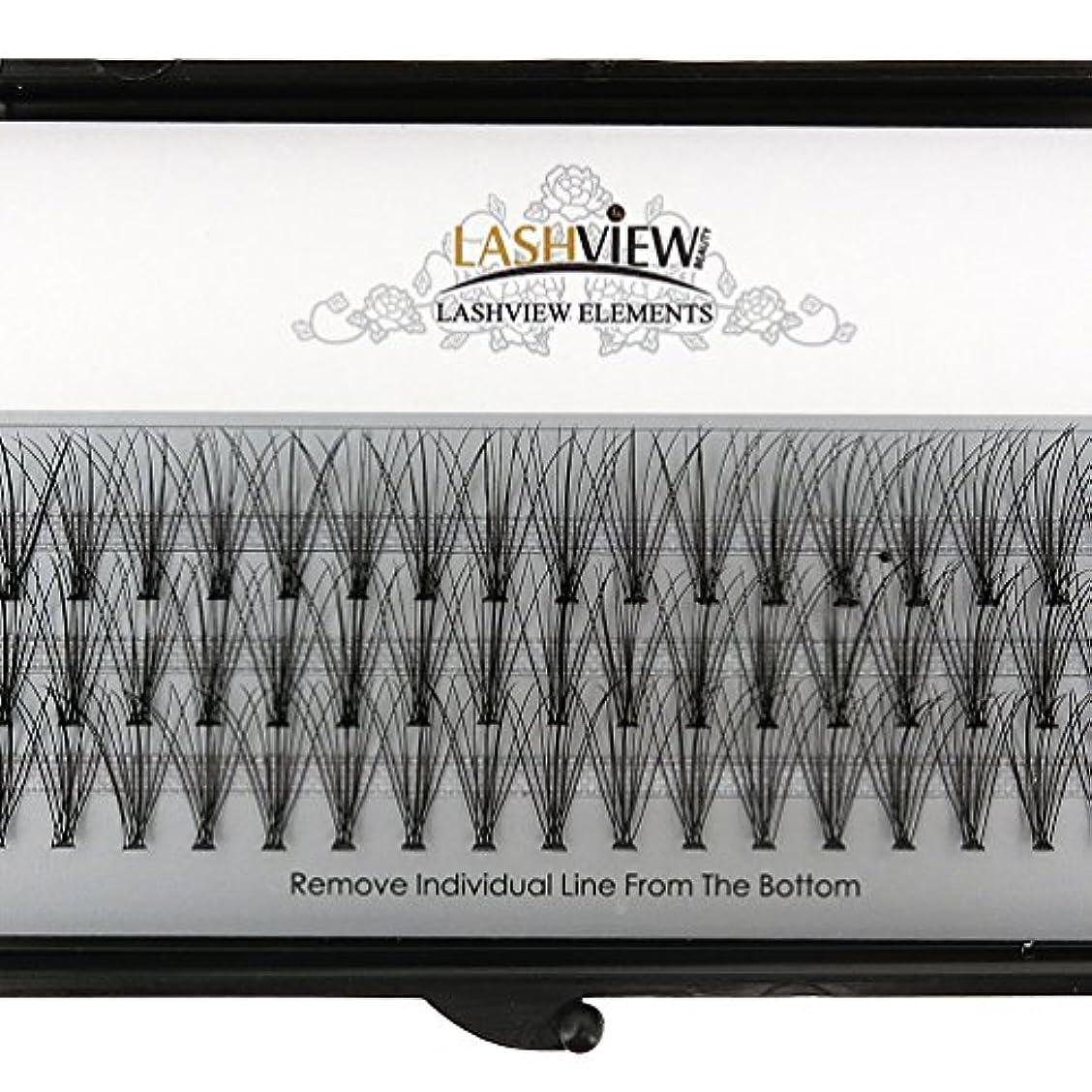 提案普通に振幅LASHVIEW 高品質まつげエクステ太さ0.10mm Cカール フレア セルフ用 素材 10本束12mm マツエク
