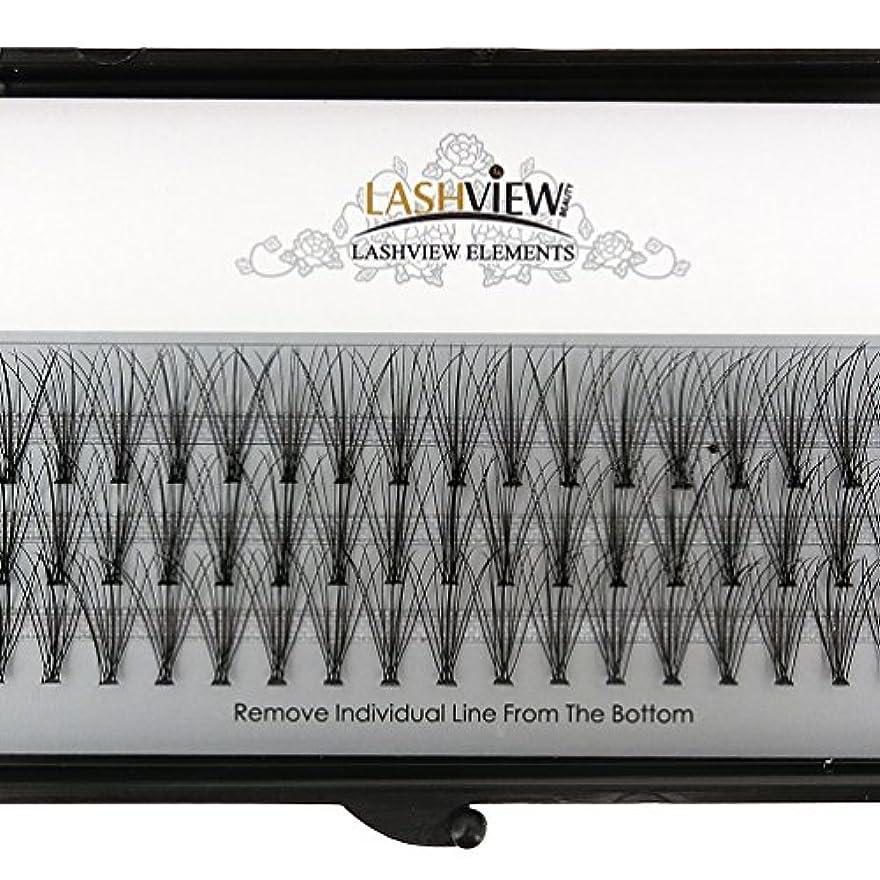 絶えずニンニク価格LASHVIEW 高品質まつげエクステ太さ0.10mm Cカール フレア セルフ用 素材 10本束12mm マツエク