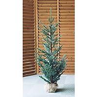 ホーゲボーニング HOGEWONING クリスマスツリー?120cm HW7027