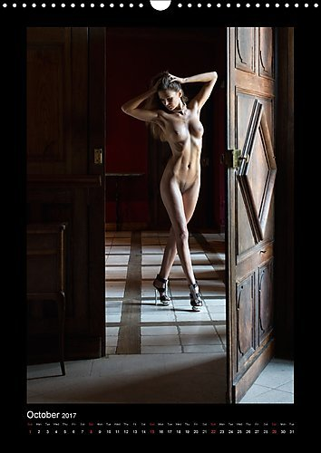 Hotel Room Stories 2017: Nude Photography in Classy Rooms (Calvendo Art)