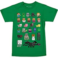Minecraft Character Short Sleeved Big Boys Tee