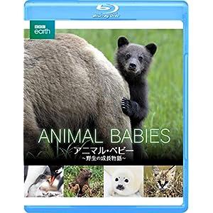 BBC earth アニマル・ベビー ~野生の成長物語~ [Blu-ray]