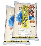【新米】新潟県産(産地直送米) 白米 こしいぶき10kg(5kg×2袋) 29年産