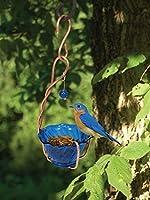 Songbird Essentials SEHHBBMW Copper Bluebird Mealworm Feeder