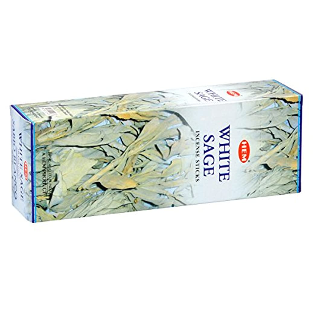現れる特性ジレンマHEM(ヘム) ホワイト セージ WHITE SAGE スティックタイプ お香 6筒 セット [並行輸入品]