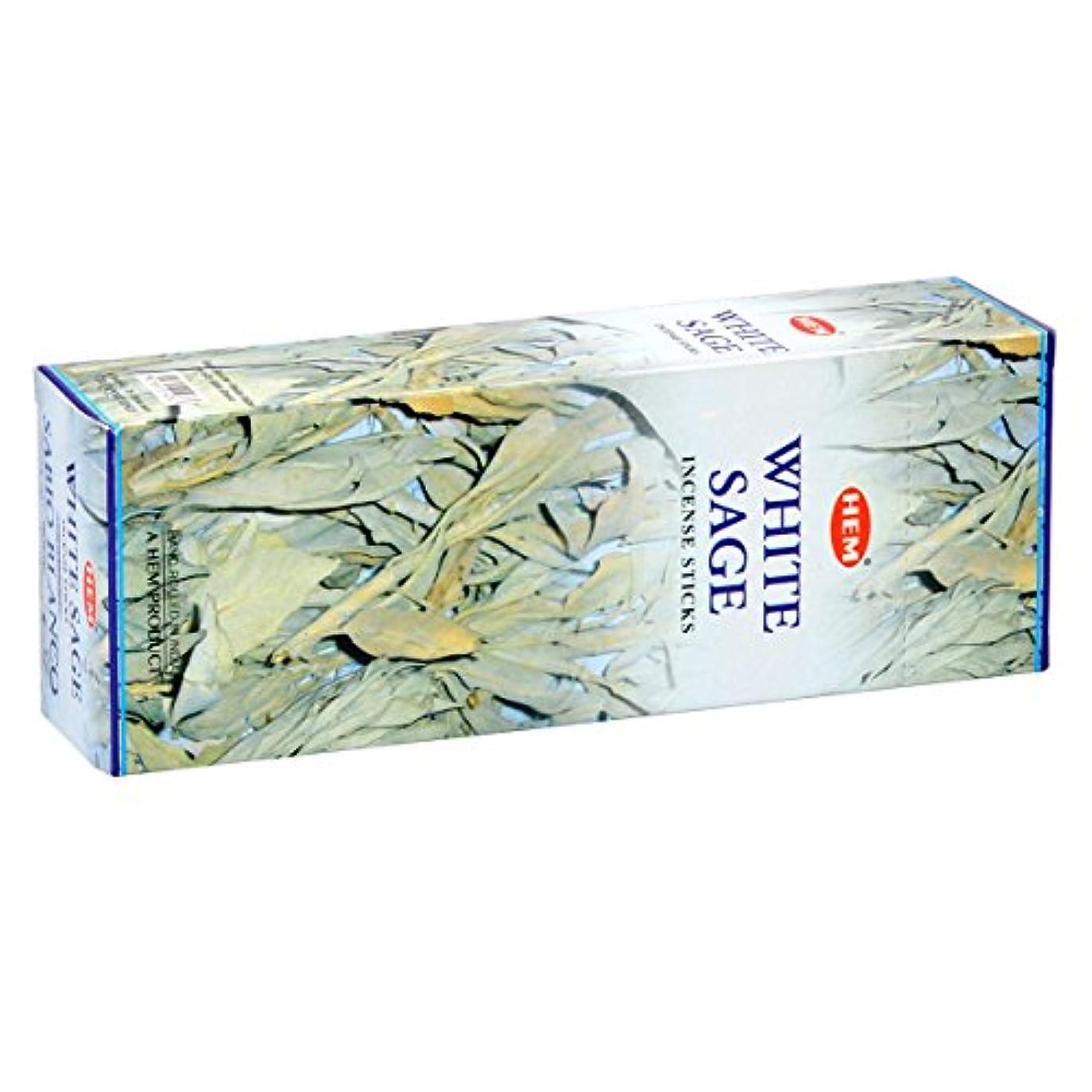 フラフープ下るピンHEM(ヘム) ホワイト セージ WHITE SAGE スティックタイプ お香 6筒 セット [並行輸入品]