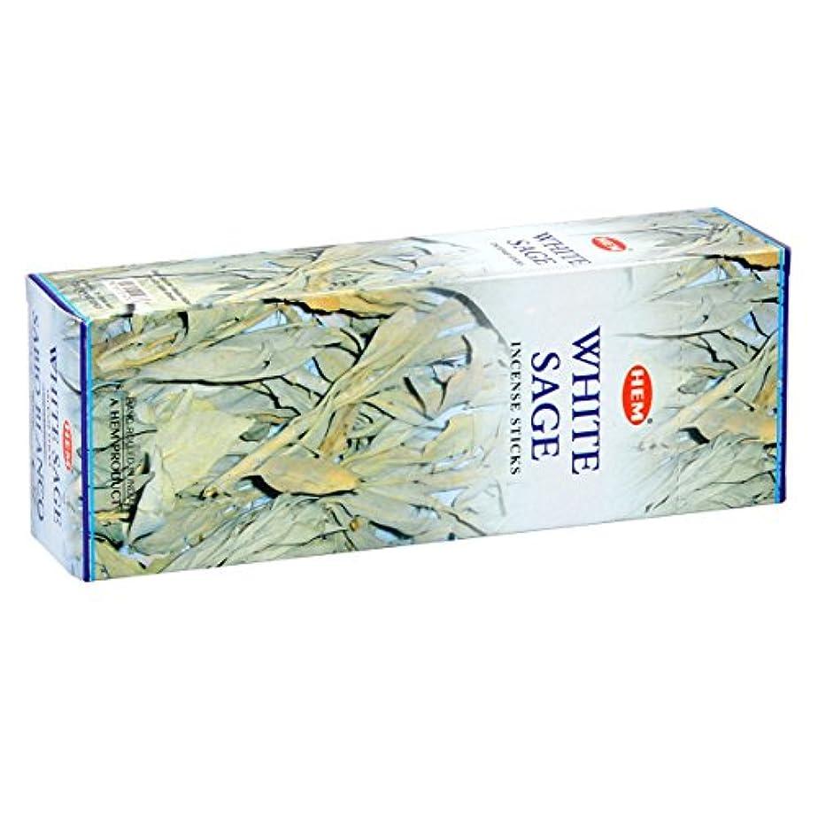生物学任命村HEM(ヘム) ホワイト セージ WHITE SAGE スティックタイプ お香 6筒 セット [並行輸入品]