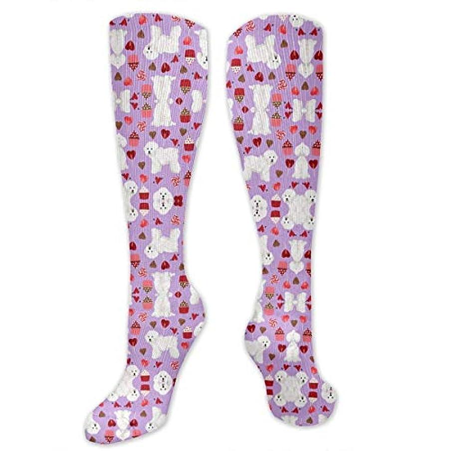 スケルトンゴールド脳靴下,ストッキング,野生のジョーカー,実際,秋の本質,冬必須,サマーウェア&RBXAA Bichon Frise Valentines Day Socks Women's Winter Cotton Long Tube...