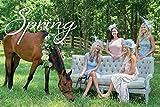 Four Seasons of Entertaining 画像