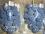 種無し山梨・長野県産巨峰ぶどう2パック入り