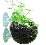 アクアリウム インテリア 水槽 水草 レイアウト 鉢 (3個セット)