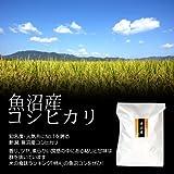 【平成28年産】魚沼産コシヒカリ 白米(精米) 10kg/最高級 南魚沼産の一等米