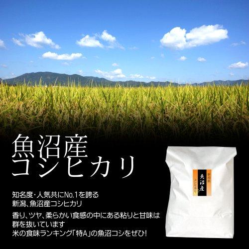 【入学祝】魚沼産コシヒカリ 3kg