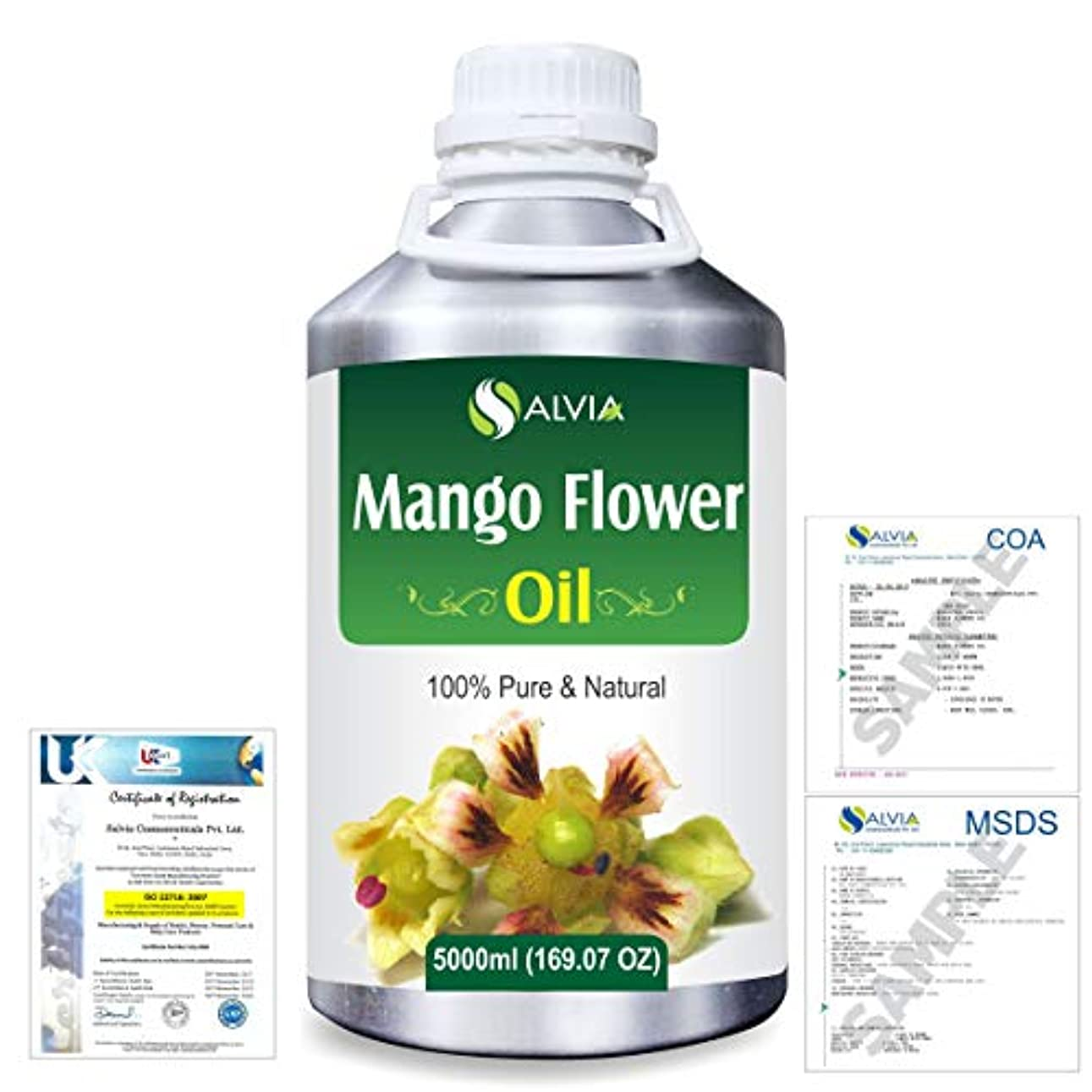 帰する憲法燃やすMango Flowers (Mangifera indica) 100% Natural Pure Essential Oil 5000ml/169fl.oz.