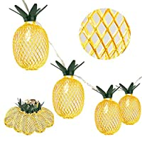 Whonline 16ft 20 LED Pineapple String Lights Battery Operated Fairy String Lights for Party and Home Festival Decoration (Warm White, 2 Pack) [並行輸入品]