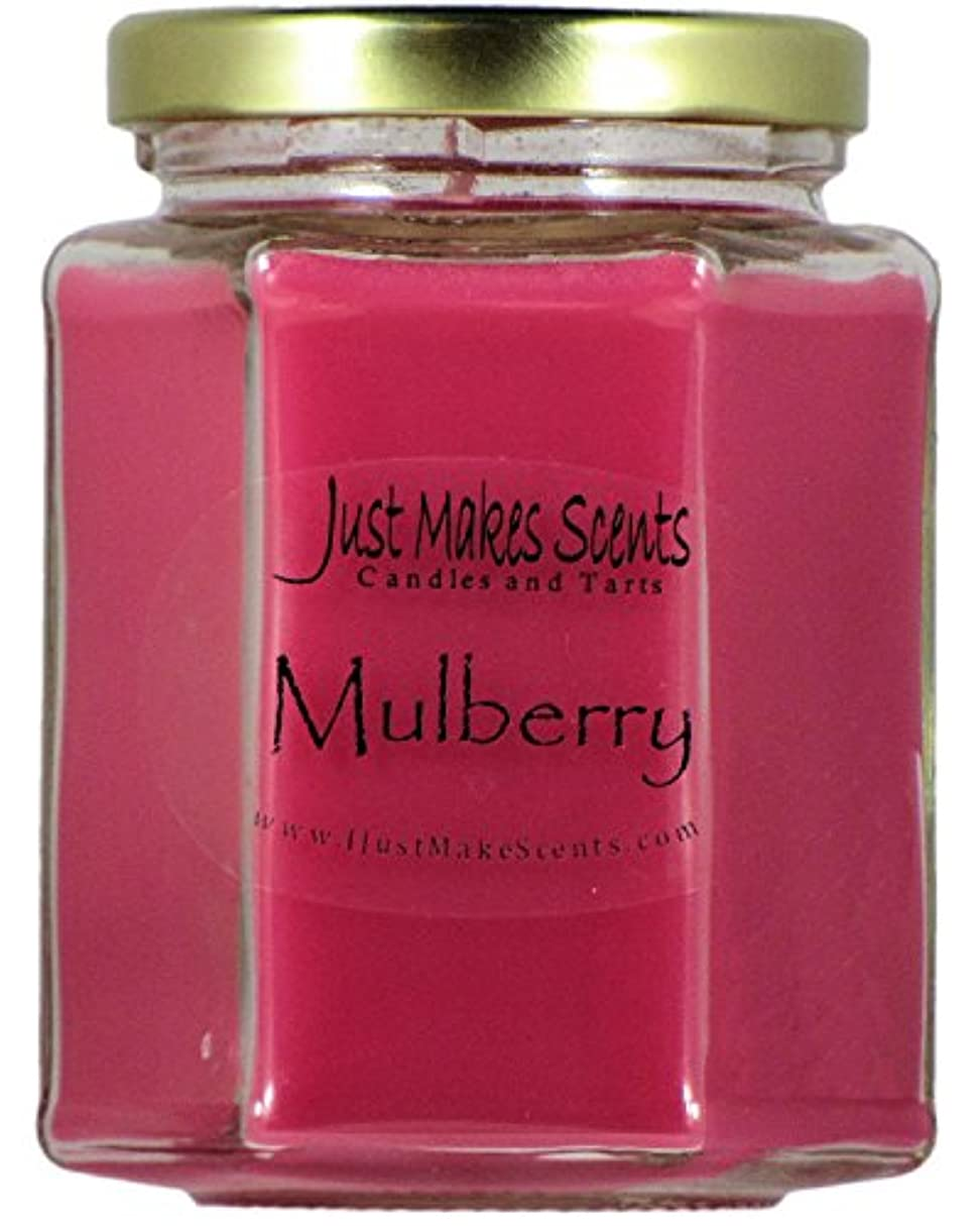 老朽化した負荷オズワルドMulberry香りつきBlended Soy Candle by Just Makes Scents